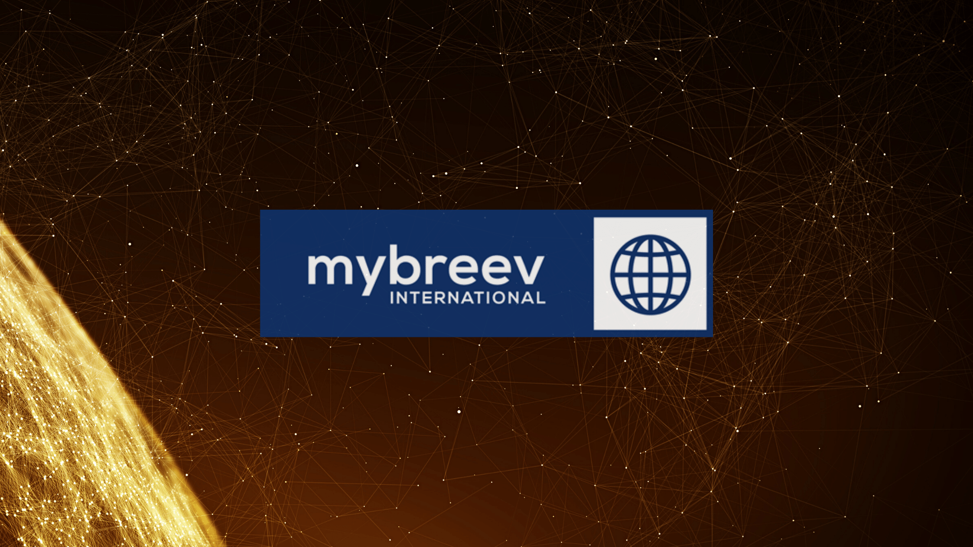 mybreev International Partner & Broker Program